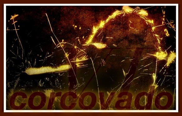 Corcovado 6 im